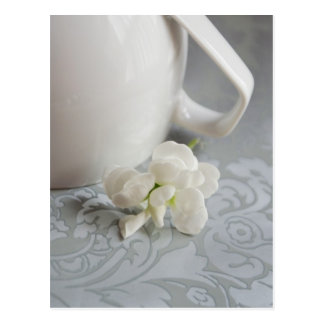 Tea for Alice Postcard