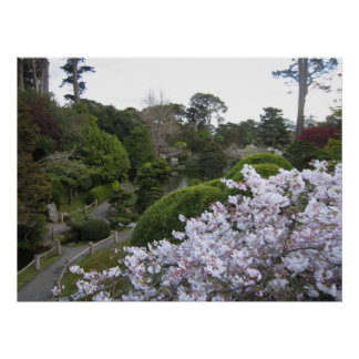 Tea Garden path Poster