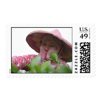 Tea lady of Taiwan Postage