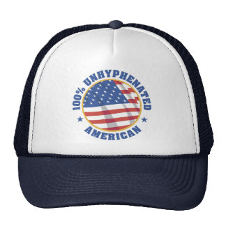 TEA PARTY MOVEMENT HAT