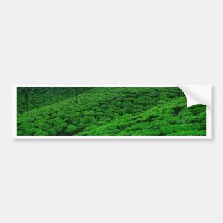 Tea plantation bumper sticker