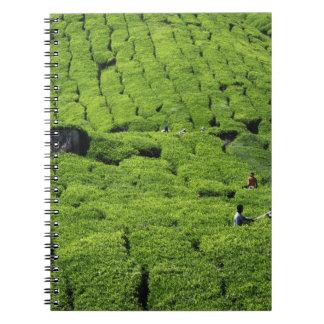 Tea plantation harvest of lush green plants spiral note book