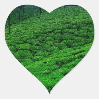 Tea plantation heart sticker