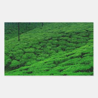 Tea plantation rectangular sticker