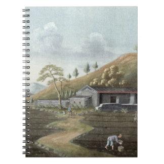 Tea planting (w/c on paper) journal