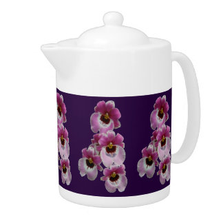 Tea Pot - Pansy Orchid