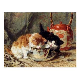 Tea Time by Henriëtte Ronner-Knip Postcard