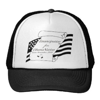 teabag10 trucker hat