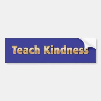 Teach Kindness Car Bumper Sticker