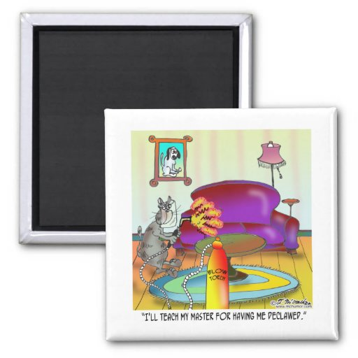 Zazzle Teach Master For Having Cat Declawed Magnet
