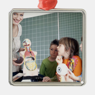 teacher demonstrating model of human body to metal ornament