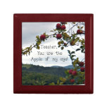 Teacher, you are the apple of my eye! gift boxes
