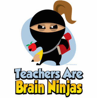 Teachers Are Brain Ninjas Statuette