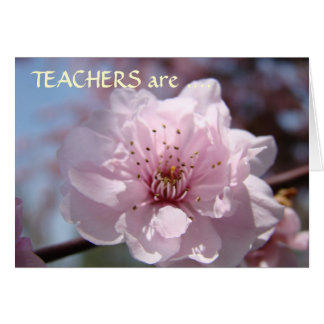 TEACHERS are EVERYDAY HEROES! Cards Thank You