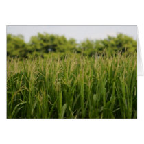 Teachers Farming Note Cards