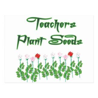 TEACHERS PLANT SEEDS POSTCARD