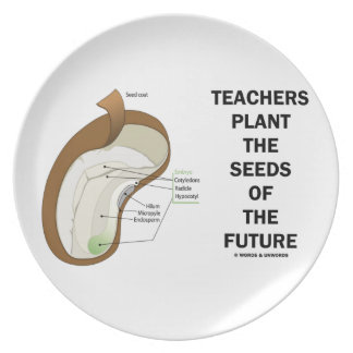 Teachers Plant The Seeds Of The Future (Bean Seed) Plate