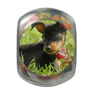 Teacup Chihuahua Glass Candy Jars