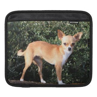 Teacup Chihuahua Puppy iPad Sleeves