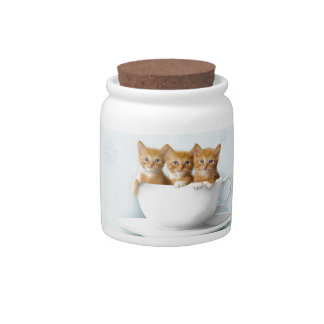 Teacup Kittens Candy Jars