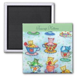Teacup Kittens Magnet