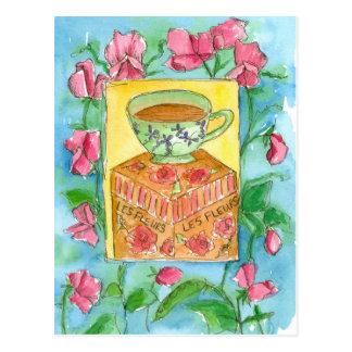 Teacup Pink Sweet Peas Flowers Watercolor Postcard