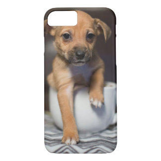 Teacup Puppy: Barely There iPhone Cover