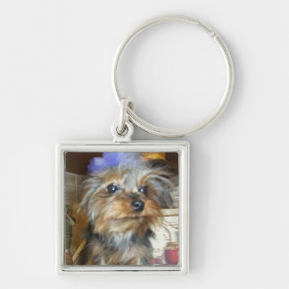 TEACUP YORKIE LOVERS Silver-Colored SQUARE KEYCHAIN