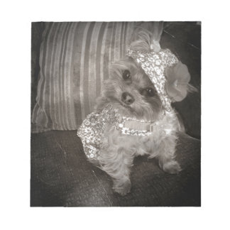 Teacup Yorkie Old Photo Note Pads