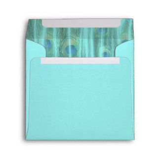 Teal Blue Peacock Feathers Envelope