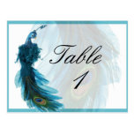 Teal Blue Peacock Plume Table Number Postcard