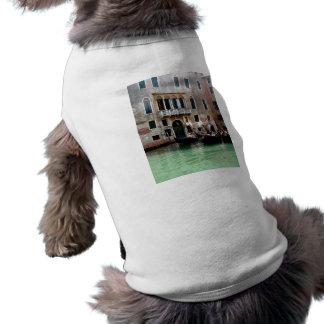 Teal Canal T-Shirt