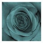 Teal Colored Rose Poster
