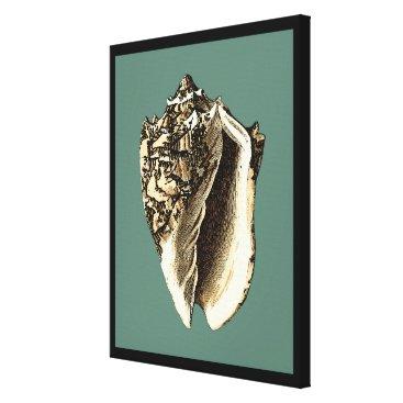 Beach Themed Teal Conch Shell Canvas Print