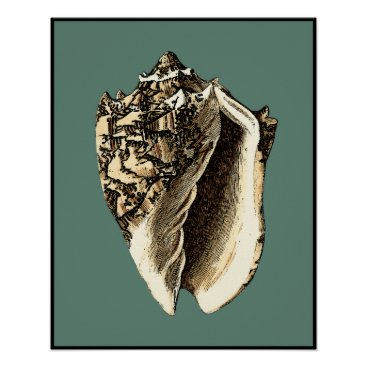 Beach Themed Teal Conch Shell Poster