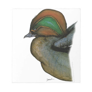 teal duck, tony fernandes note pad