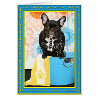 Teal - French Bulldog -1