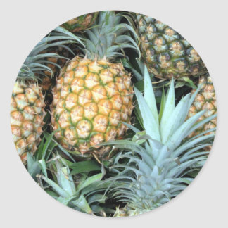 Teal, Green and Golden Hawaiian Pineapples Classic Round Sticker