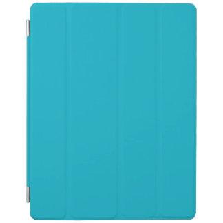 Teal iPad Cover