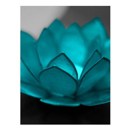 Teal Lotus Postcard
