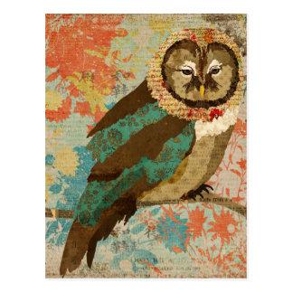 Teal Owl Postcard