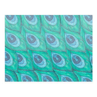 Teal Peacock Feather Pattern Design Postcard
