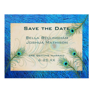 Teal Peacock Feathers Save the Date Wedding pos Postcard