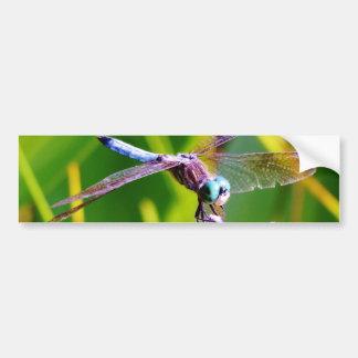Teal & purple Dragonfly Bumper Sticker