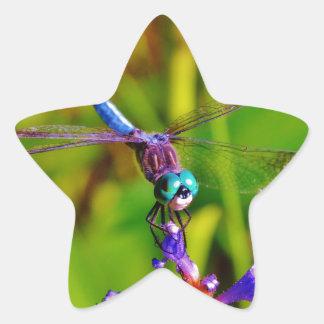 Teal Rainbow Dragonfly Star Sticker