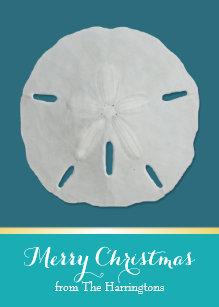teal sand dollar tropical christmas cards - Tropical Christmas Cards
