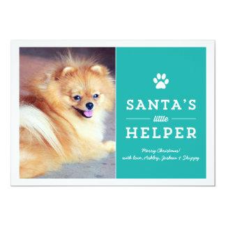Teal Santa's Helper- Pet Photo Holiday Cards