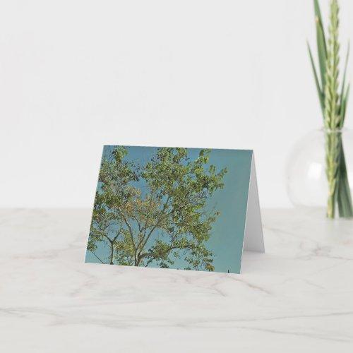 Teal Sky Tree Greeting Cards