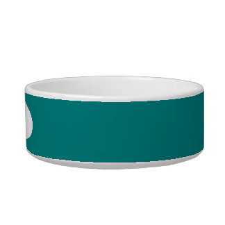 Teal Solid Color Bowl