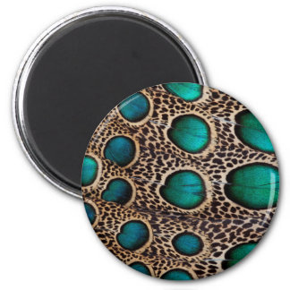Teal Spotted pheasant feather Magnet